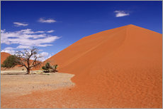Gallery print  Dunes of the Namib, Namibia - wiw