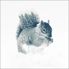 Gallery print  squirrel - Peg Essert