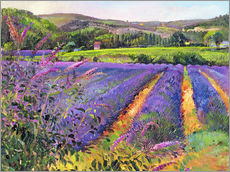 Wall sticker  Lavender field - Timothy Easton