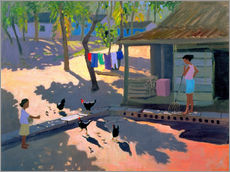 Gallery print  Hens and Chickens, Cuba, 1997 - Andrew Macara