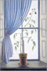 Wall sticker  Plant in the window, 2003 - Ruth Addinall