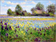 Wall sticker  Blumenfeld - Timothy Easton
