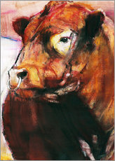 Gallery print  portrait of a bull - Mark Adlington