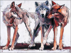 Wall sticker  Pack of wolves - Mark Adlington