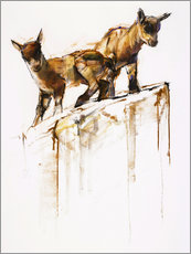 Gallery print  Little goats - Mark Adlington