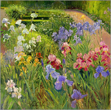 Gallery print  flower bed - Timothy Easton