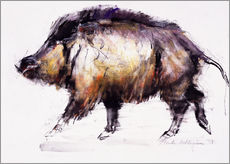 Wall sticker Wild Boar