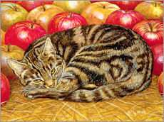 Wall Sticker  Cat and Apples - Ditz