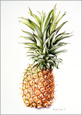 Wall sticker  Pineapple, 1997 - Alison Cooper