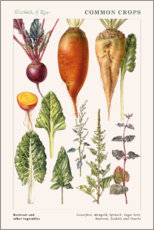 Wall sticker  Beetroot and other vegetables - Elizabeth Rice