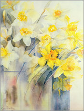 Wall sticker  Various daffodils in a vase - Karen Armitage