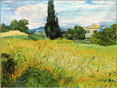 Aluminium print  Landscape with Green Corn - Vincent van Gogh