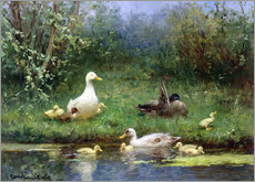 Gallery print  Ducks on the riverbank - David Adolph Constant Artz