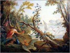 Wood print  Lake with swans, a flamingo and a peacock - François Boucher