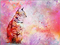 Gallery Print  Cat - Andrea Haase