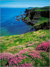 The Irish Image Collection - Dunluce Castle, Ireland