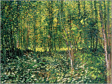 Gallery print  Trees and Undergrowth - Vincent van Gogh