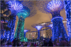 Gallery Print  Supertrees, Singapore, Asia - Peter Schickert