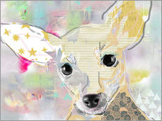Wall sticker Chihuahua Collage