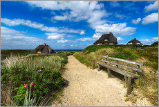 Gallery print  Sylt dunes and sea - Filtergrafia