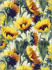 Gallery print  Sunflowers forever - Micklyn Le Feuvre