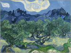 Acrylic print  Olive trees with the alpilles in the background - Vincent van Gogh