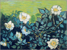 Wall Stickers  Wild Roses - Vincent van Gogh