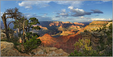 Wall Stickers  Grand Canyon with knotty pine - Michael Rucker