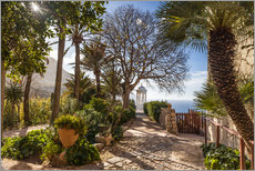 Gallery print  In the garden Son Marroig (Mallorca, Spain) - Christian Müringer