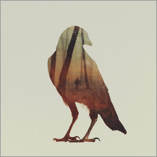 Wall sticker  crow - Andreas Lie