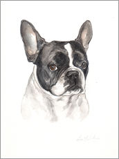 Wall Stickers  French bulldog, black-white - Lisa May Painting
