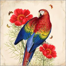 Wall sticker Oh My Parrot III
