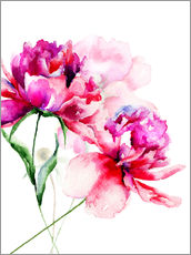 Gallery print  Beautiful peony flowers