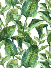 Wall sticker  Tropical Leaves in Watercolor