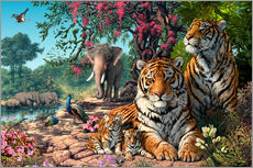 Gallery print  Tiger Sanctuary - Steve Read