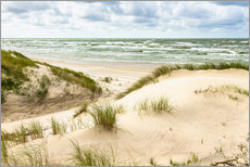 Gallery Print  Sand dunes on the Baltic sea
