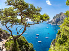 Gallery print  A beautiful summer on Capri