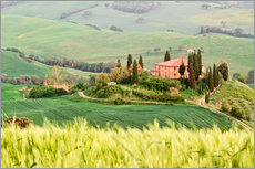 Wall sticker typical Tuscany landscape
