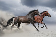 Gallery print  Horses in the Storm