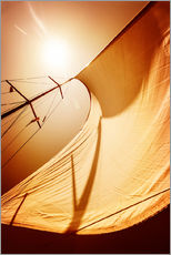 Gallery Print  Sail in the wind II