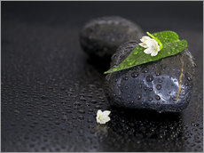 Gallery print  Black stones with leaf