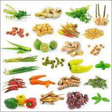 Gallery print  Vegetable and herb collection