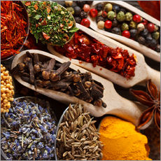 Wall sticker  Colorful Spices and Herbs