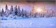 Wall sticker  Winter Sunrise in the Mountain Forest