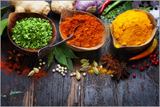 Gallery print  Colorful spices diversity