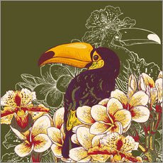 Gallery print  Toucan olive