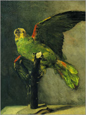 Wall Stickers  The green parrot - Vincent van Gogh