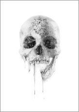 Wall Stickers  Crystal Skull - Alexis Marcou
