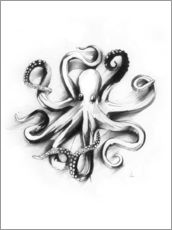 Gallery print  Flat Octopus - Alexis Marcou