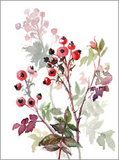 Gallery print  Rosehips - Verbrugge Watercolor